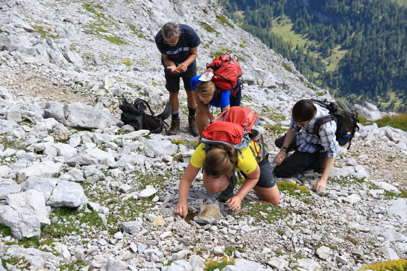 Collecting excursion in the Northern Limestone Alps (c) ABOL